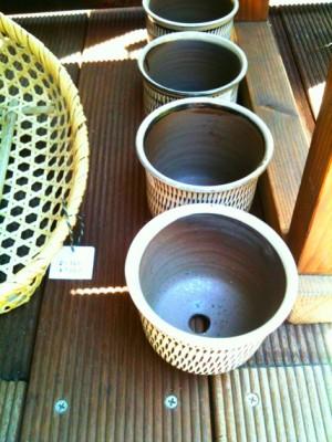 飛びカンナ植木鉢