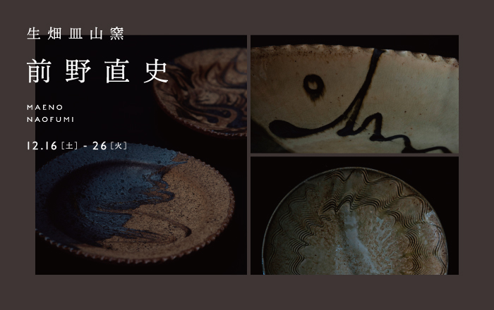 maeno2017_banner_web.jpg